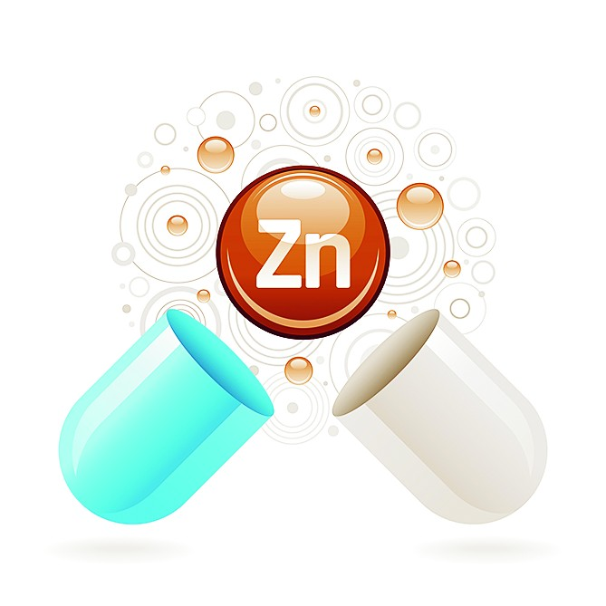 All our organs and systems require zinc to function efficiently