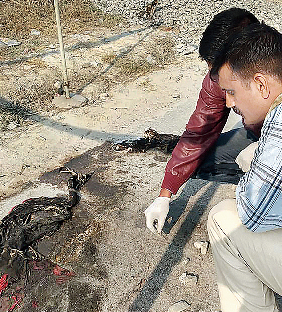 Forensic experts at the crime site in Unnao on Thursday.