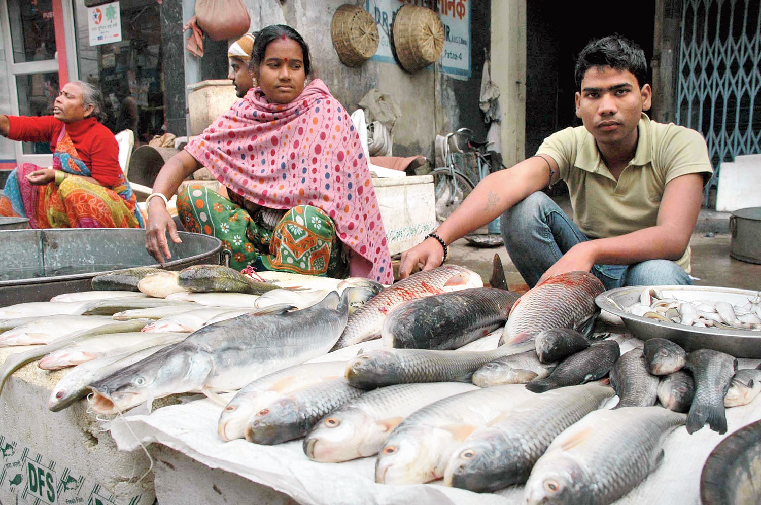 Chemical alarm on fish from Andhra
