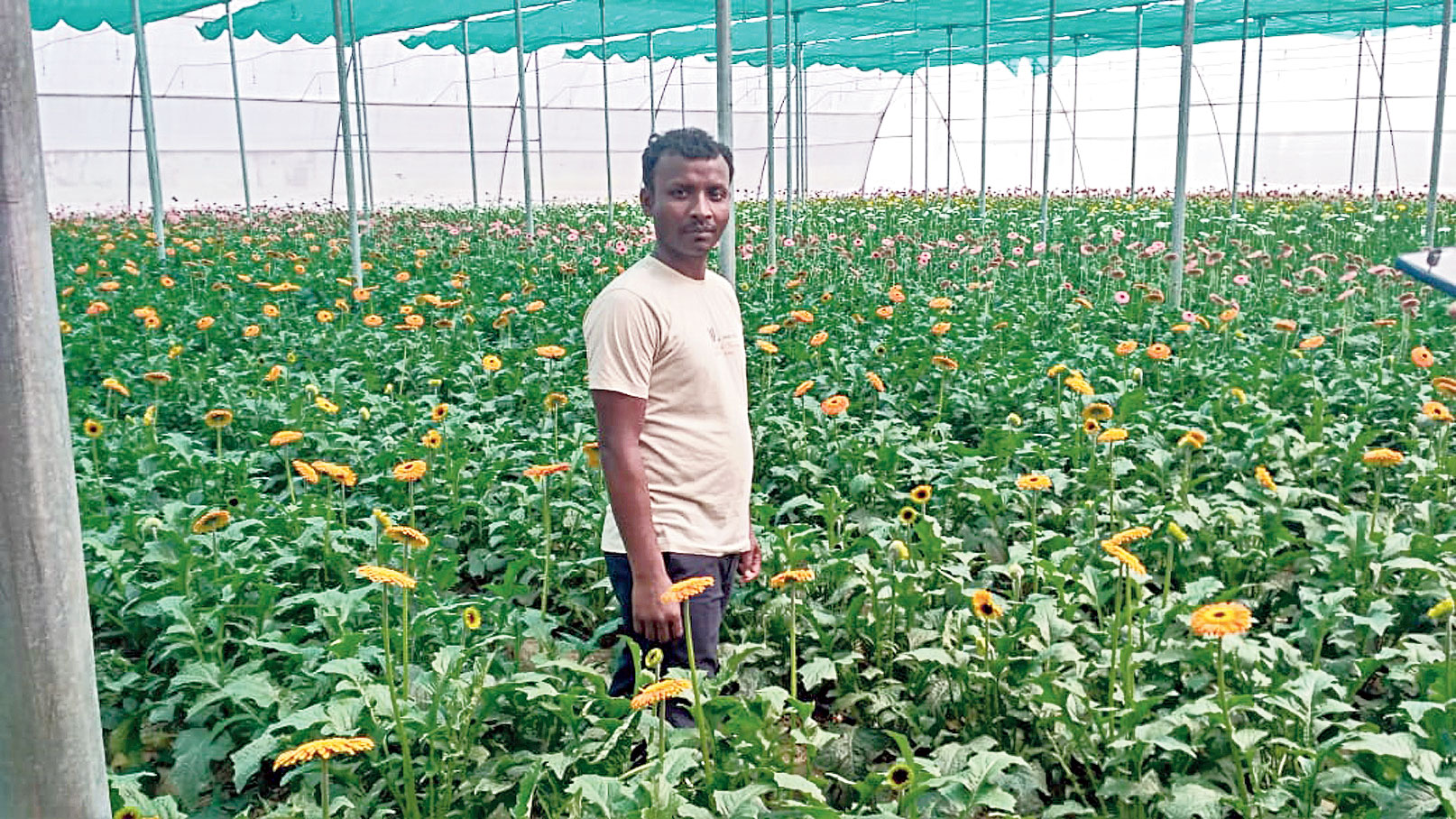 Kalindi stands at the greenhouse he has set up on the outskirts of Durgapur.