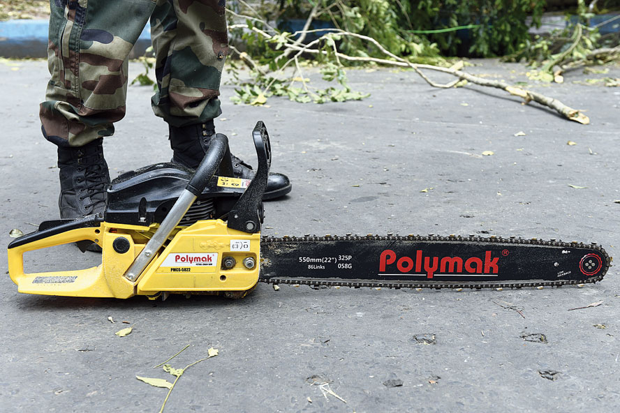 Chainsaw cutter