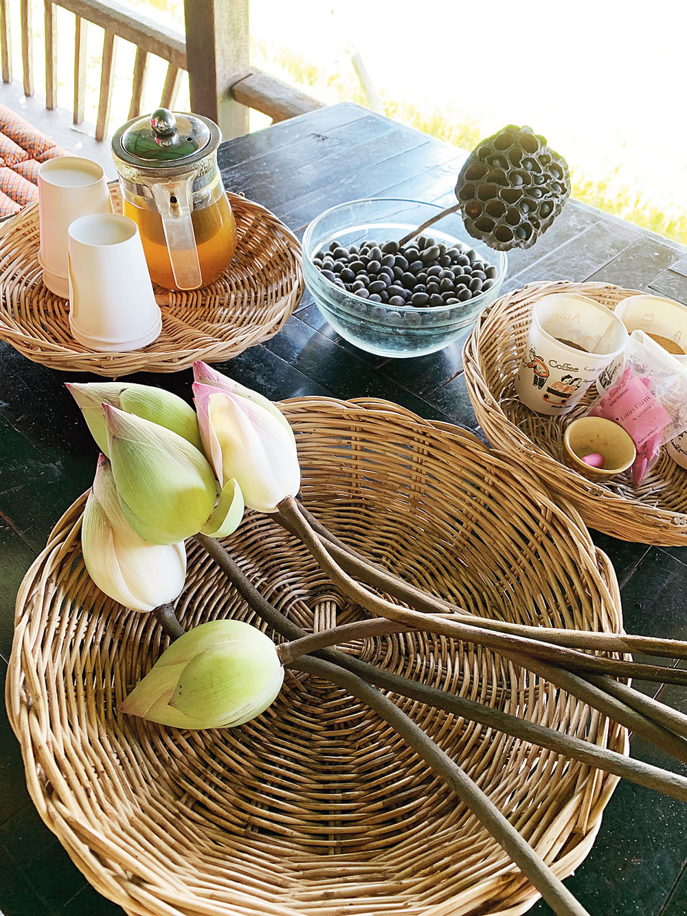 At the Samatoa Project itself, they teach you to make lotus decorations while drinking lotus tea
