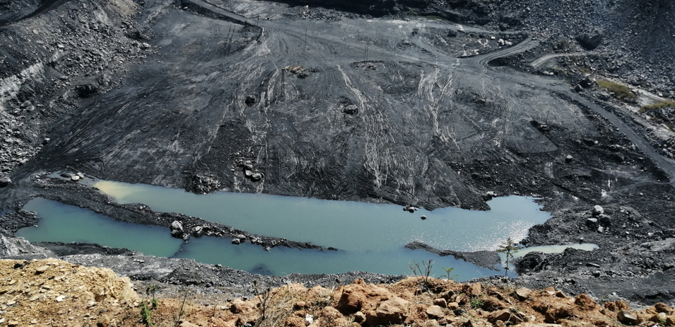 The government last month permitted 100 per cent FDI in coal mining.