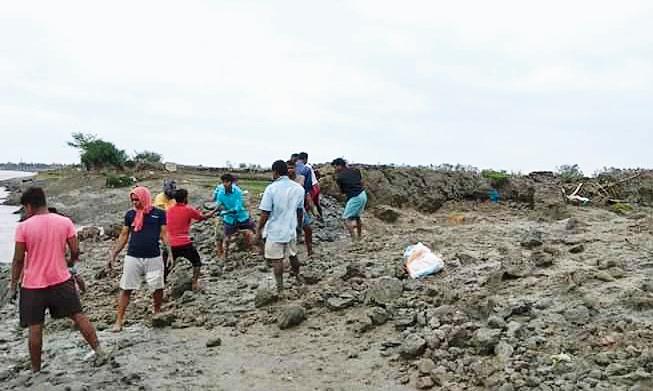 Villagers repair a breached embankment at Sandeshkhali in North 24-Parganas.