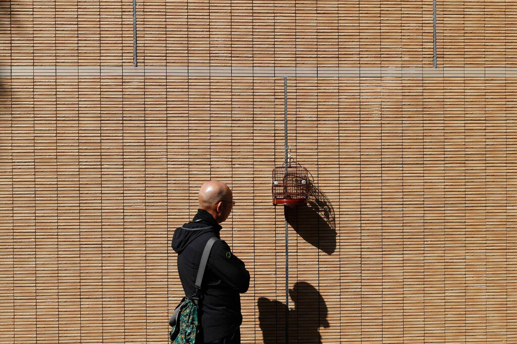 A man looks at birds in a cage at Yuen Po Street Bird Garden in Hong Kong on Friday.