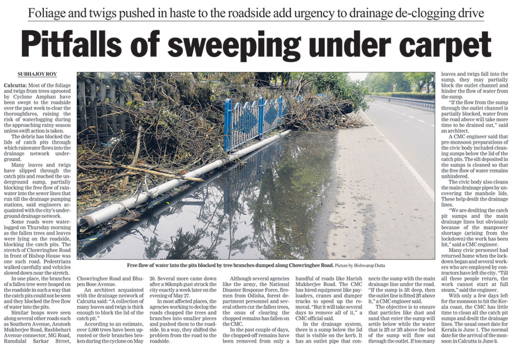 The Telegraph's report on May 29 that warned against the pitfalls of pushing foliage to the roadside