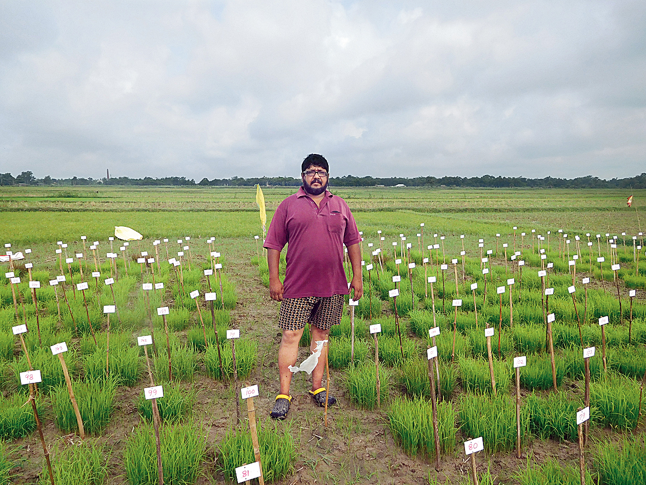 SEED SCIENCE: Abhra Chakraborty has preserved nearly 440 varieties of paddy