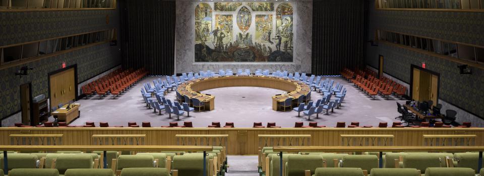 UN Security Council