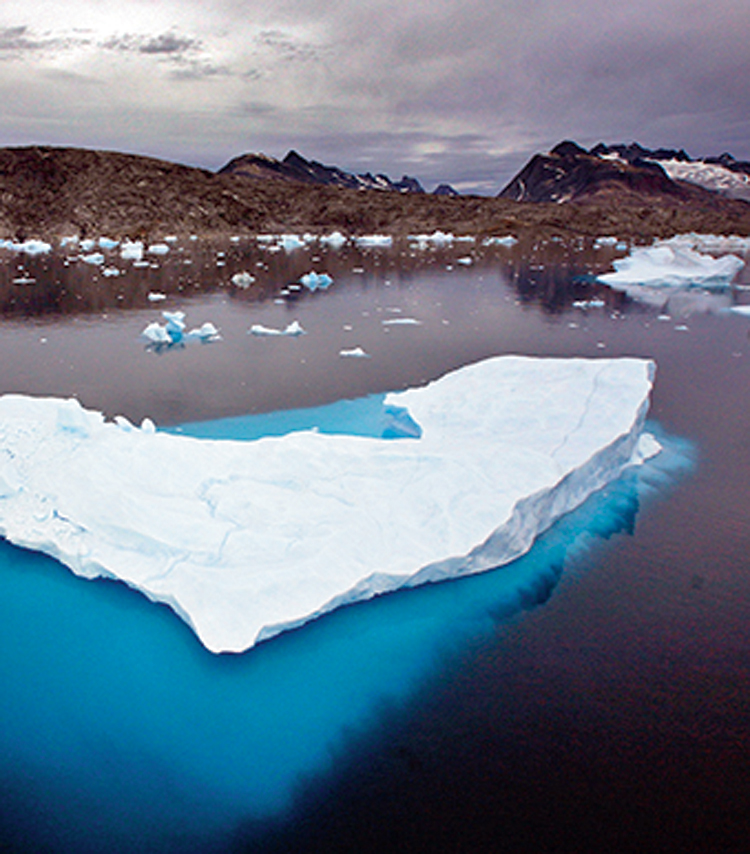 Icebergs float in a bay off Ammassalik Island, Greenland, in this July 19, 2007 file picture. Not enough is being done to change things