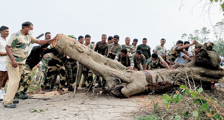 BSF personnel on Thursday remove a tree uprooted in the storm at Sutia near Bongaon.