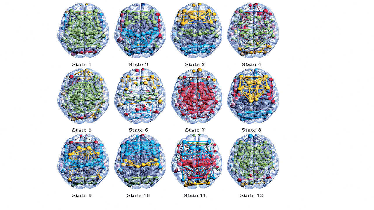 A computer representation of the 12 hidden brain states