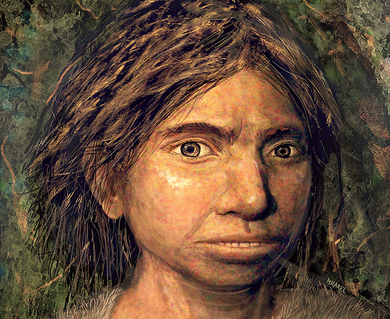 An artist's impression of a young female Denisovan, based on information derived from fossils