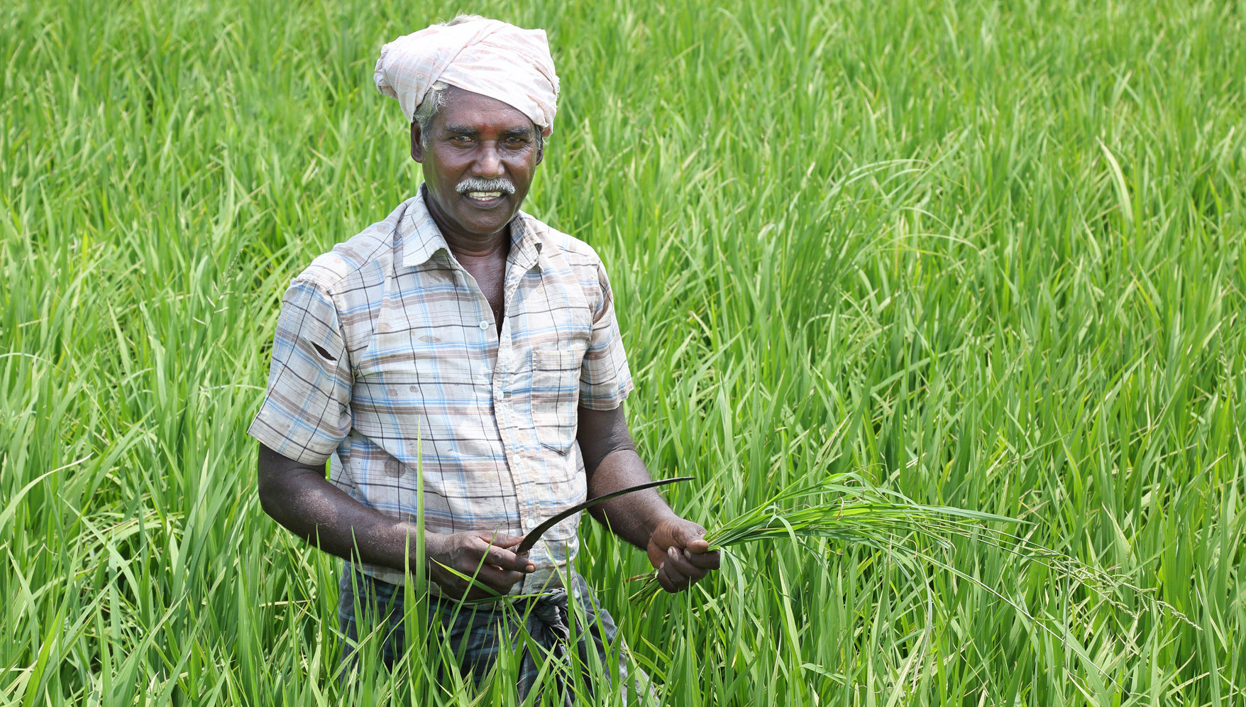 It is a matter of shame that the problems of Indian farmers are increasing day by day.