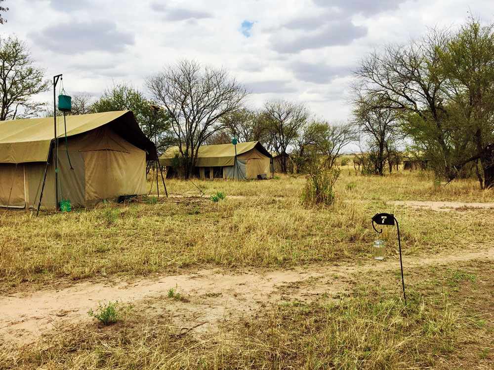 The Serengeti plains are famous for their mobile camping accommodations