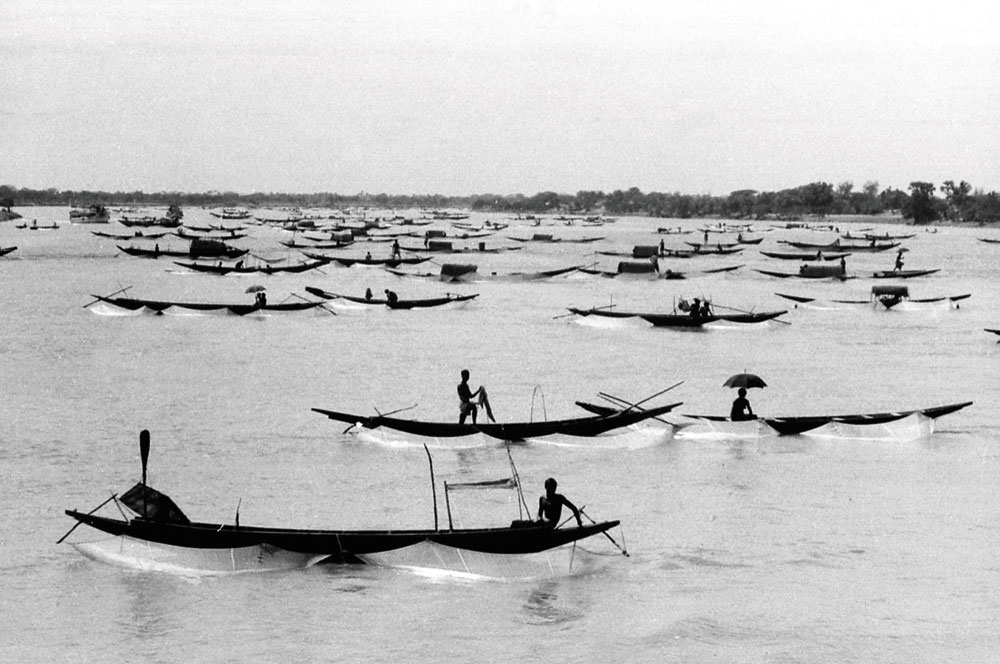 TROUBLED TIDES: A 1979 photograph of boats out fishing around Marichjhnapi. Photograph by Tapan Das