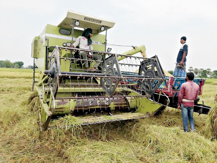 A harvester machine in a paddy field, East Burdwan. (Munshi Muklesur Rahman)