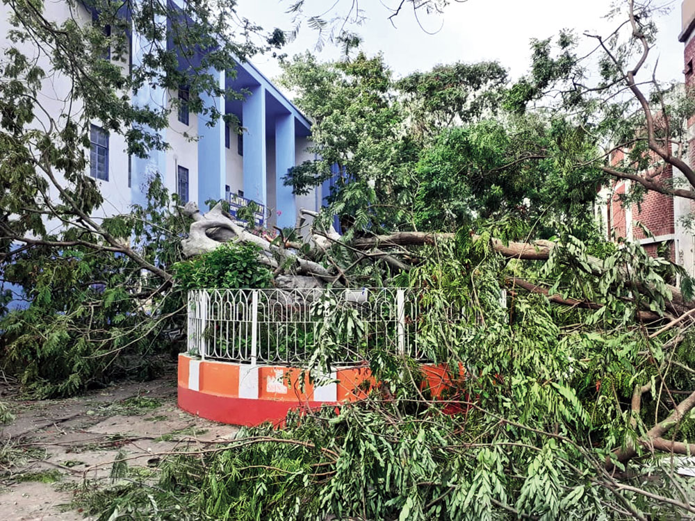 The damaged sculpture in front of the Central Library of Jadavpur University