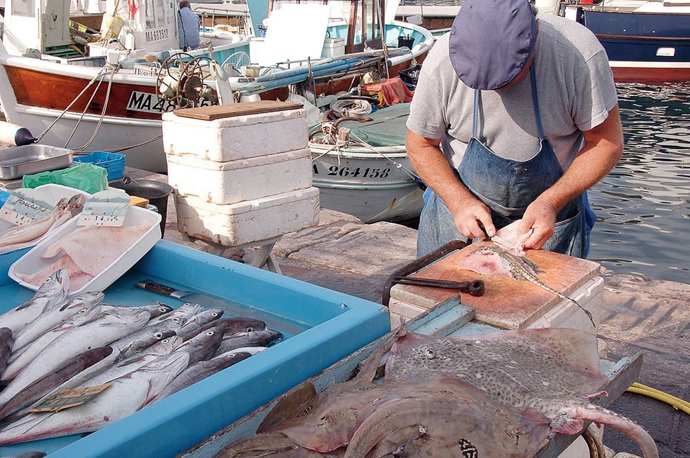 At the Old Port one can find the freshest haul of fish, even though the fisher folk arrive only at 10am