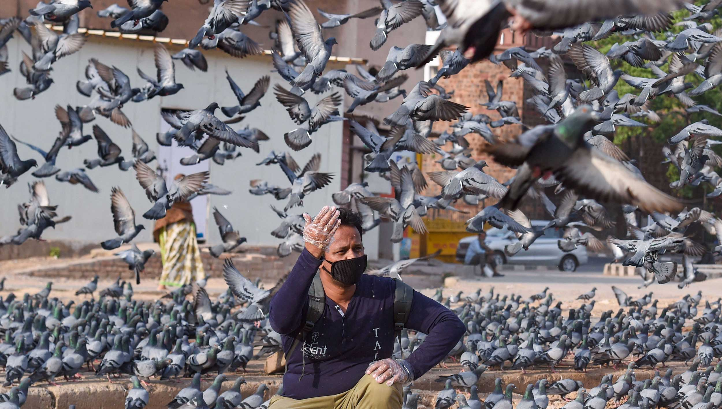 A man feeds pigeons at Ansari Road during the nationwide lockdown in New Delhi on Saturday.