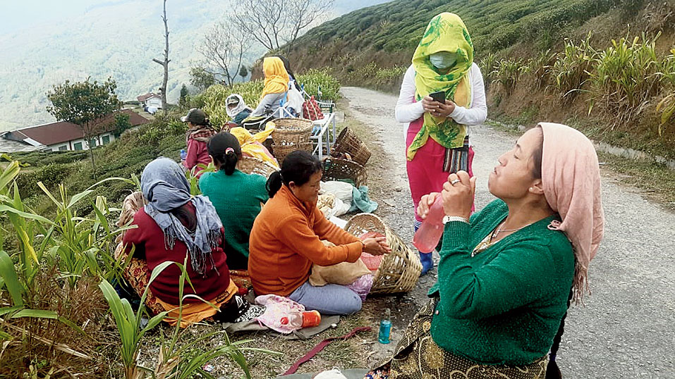 Women workers take rest after plucking of tea leaves in a garden in the Darjeeling hills on Tuesday.