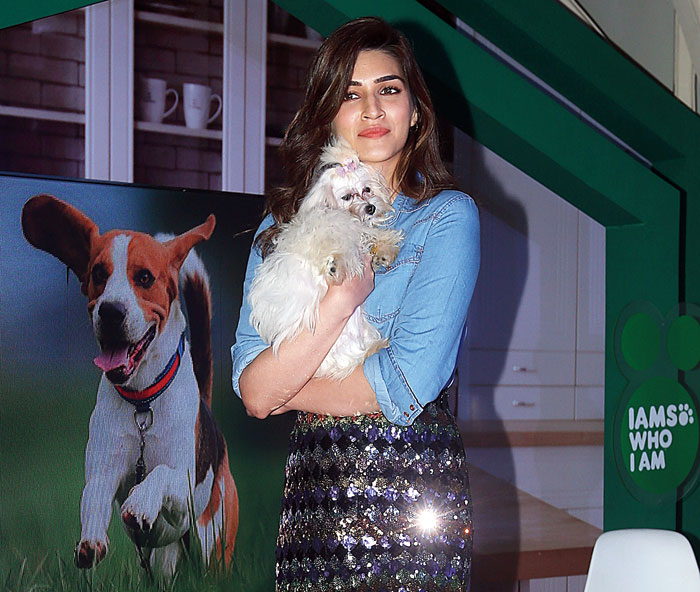 I am someone who was scared of dogs at one point. That fear went away when I met this little pup of a friend… when you meet a little pup that fear sort of goes away.: Kriti Sanon