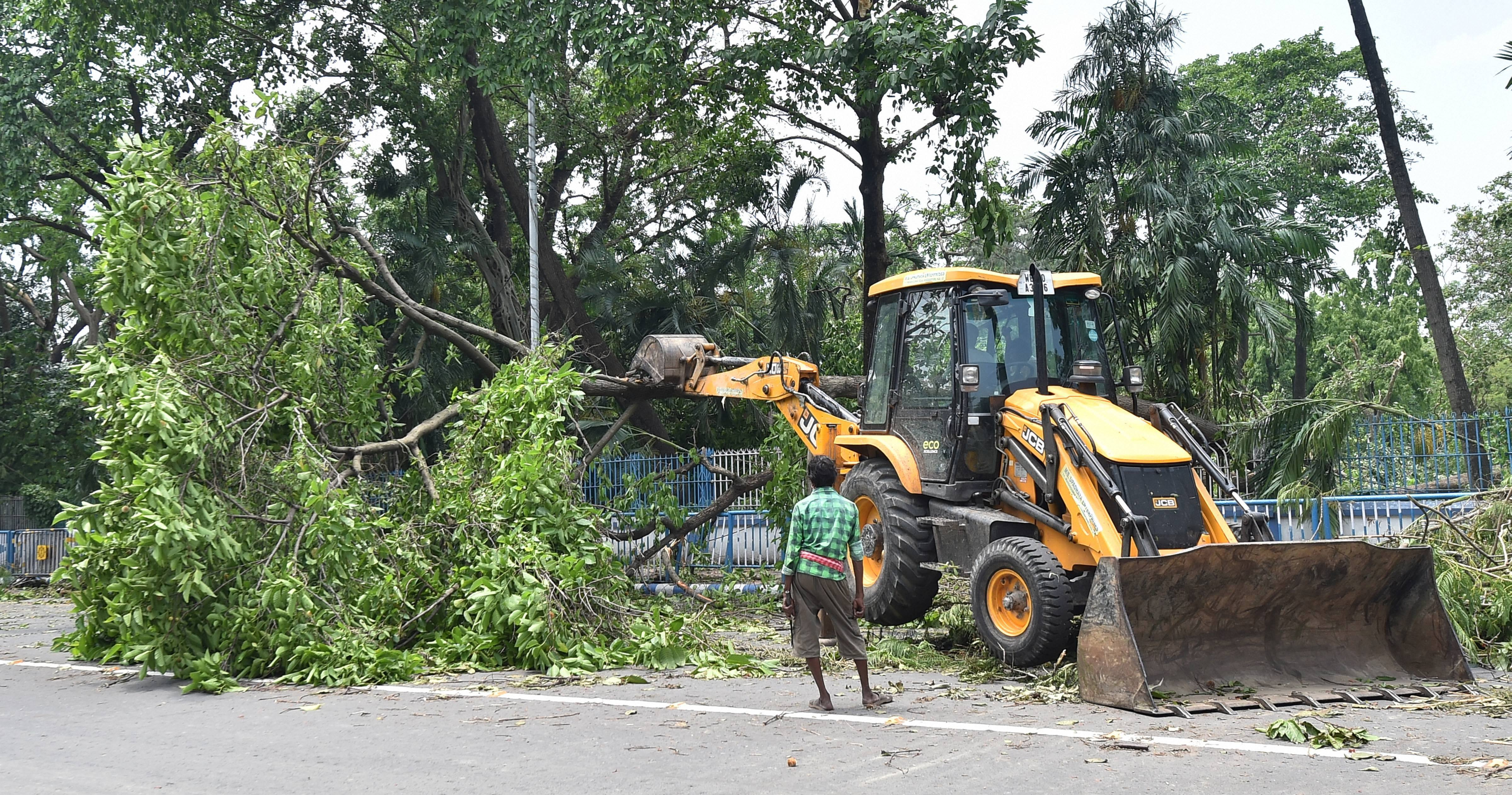 Municipal worker operates a bulldozer to clear a street blocked by uprooted trees in Calcutta
