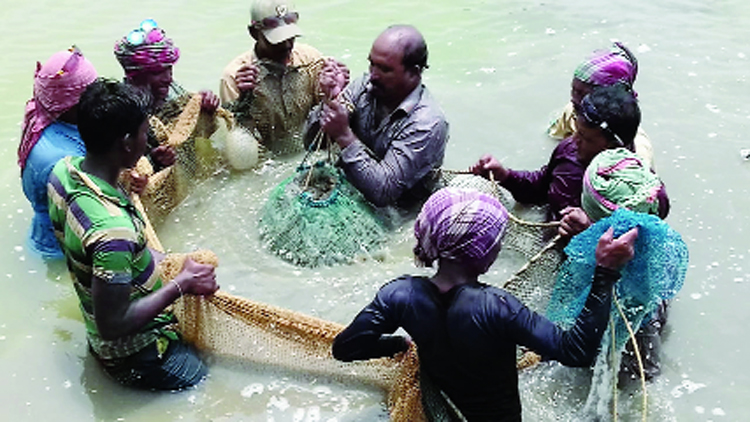 Prawn farmers in East Midnapore