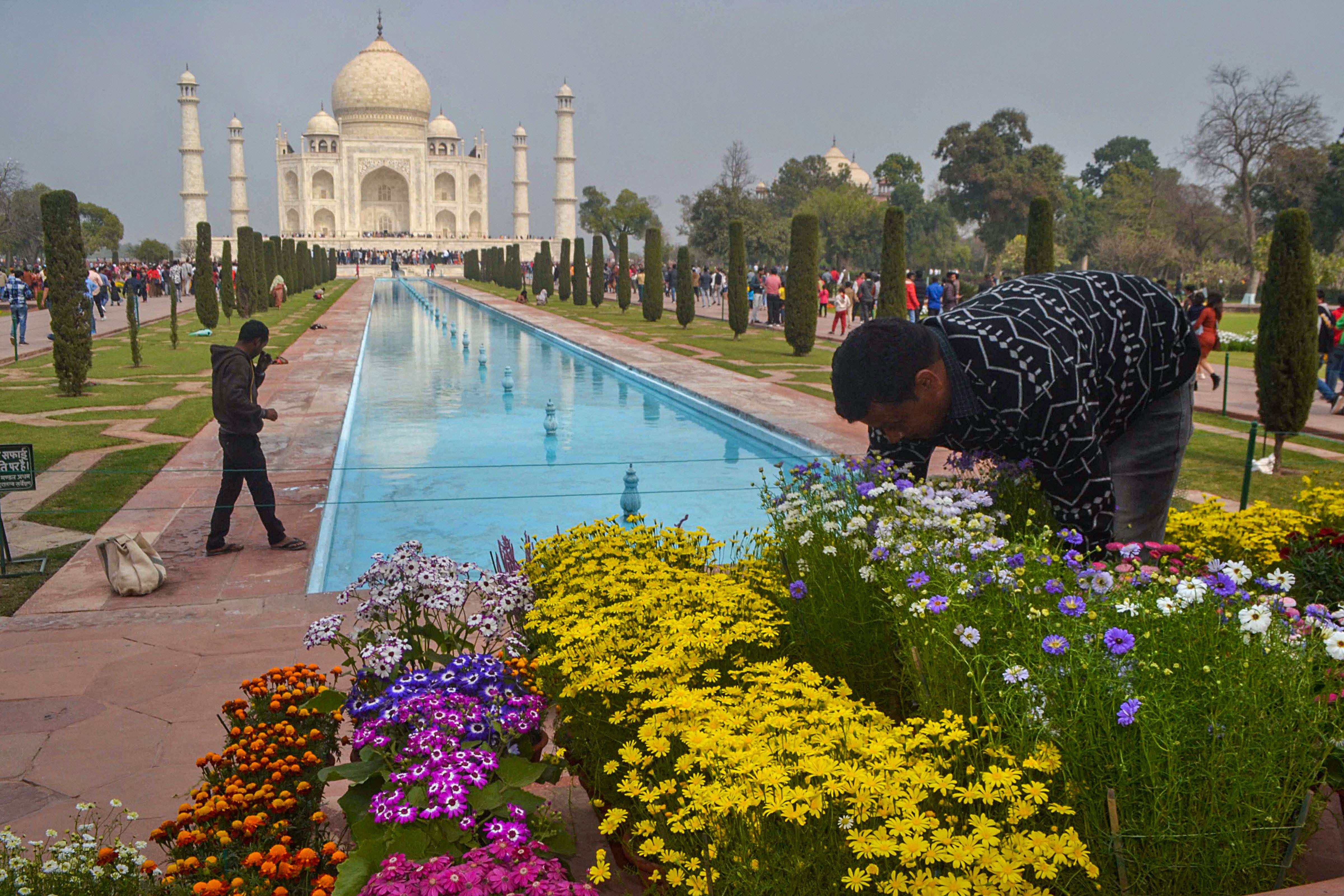 A worker arranges flower pots at the Taj Mahal ahead of US President Donald Trump's maiden visit to India, in Agra, Saturday, February 22, 2020