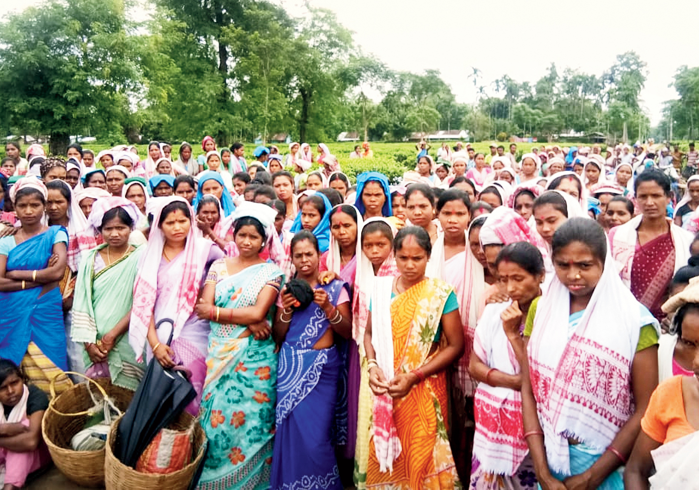 Tea tribe members participate in the awareness programme at Rupai tea estate in Tinsukia on Friday.