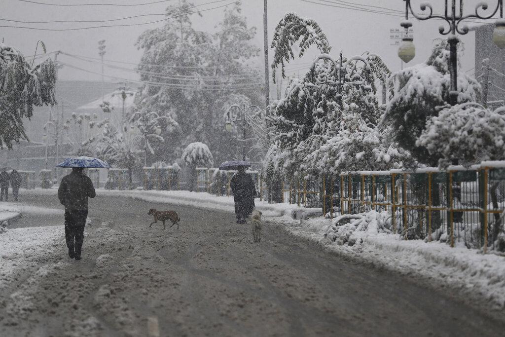 A dog crosses a street as people walk in the snow in Srinagar, Kashmir, on Thursday, Nov. 7, 2019