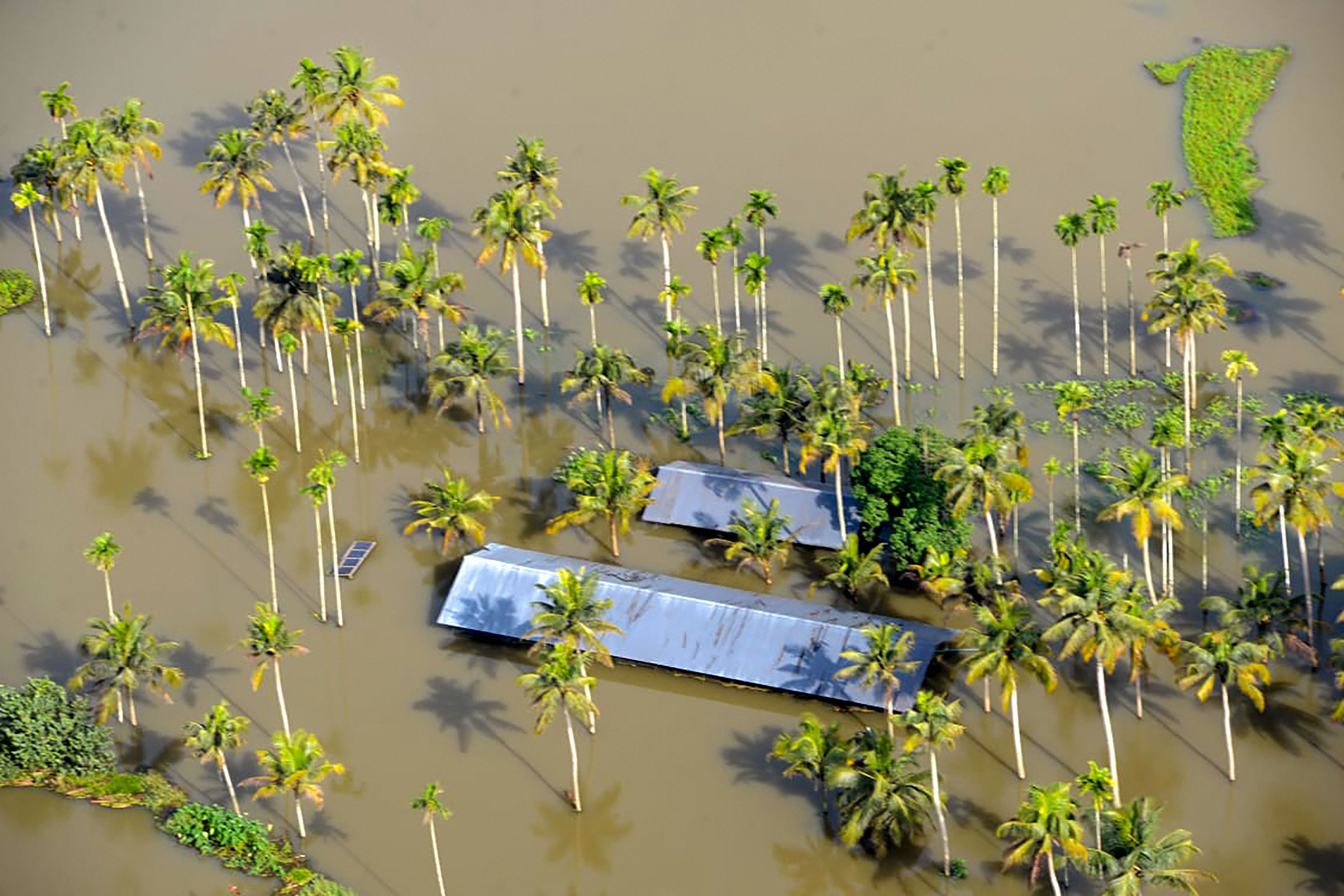 Toll climbs to 67 in Kerala rain mayhem; 58 missing; over 2.27 lakh people displaced