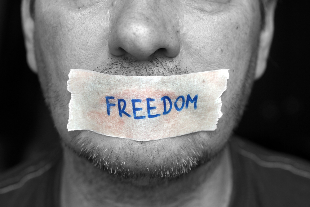 Freedom of expression is a democratic value; that it should be used only to spew venom on those who are different is a perversion of that value, for it implies a deep inequality between those who are free to be poisonous and those who have no freedom to be different