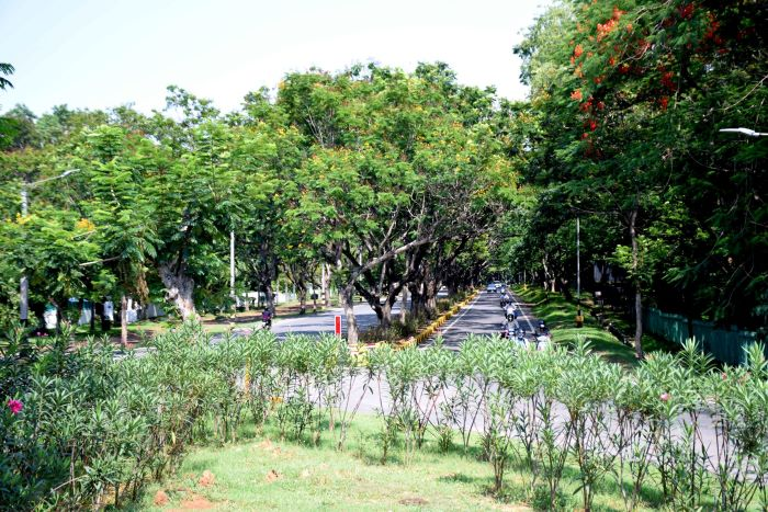 The tree-lined Circuit House locality in Jamshedpur on Tuesday