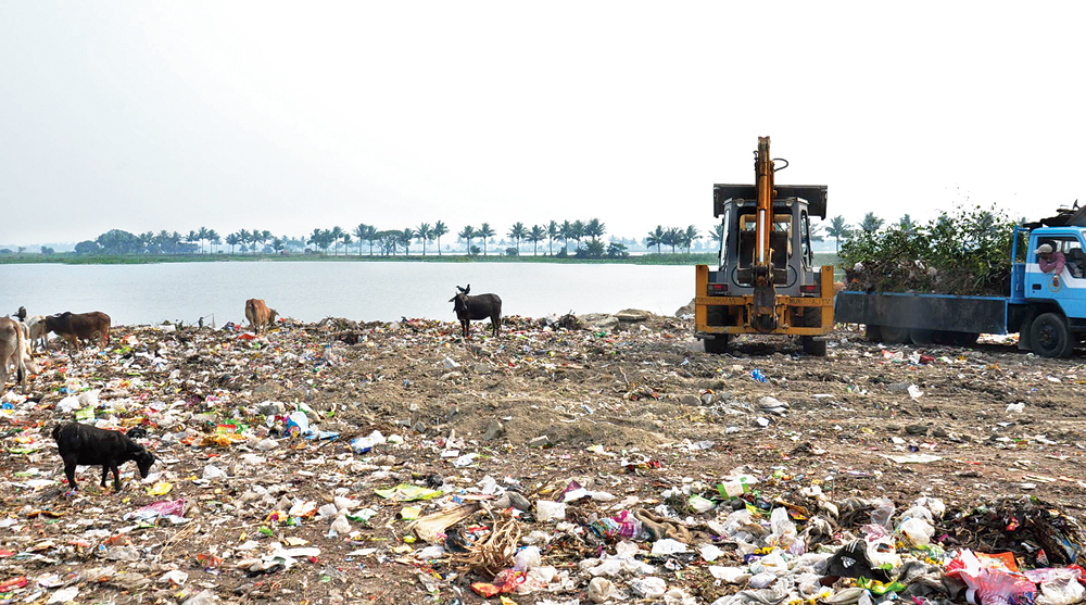 Mollar Bheri, behind Sector V, will no longer be used as a dumpyard for Salt Lake's waste