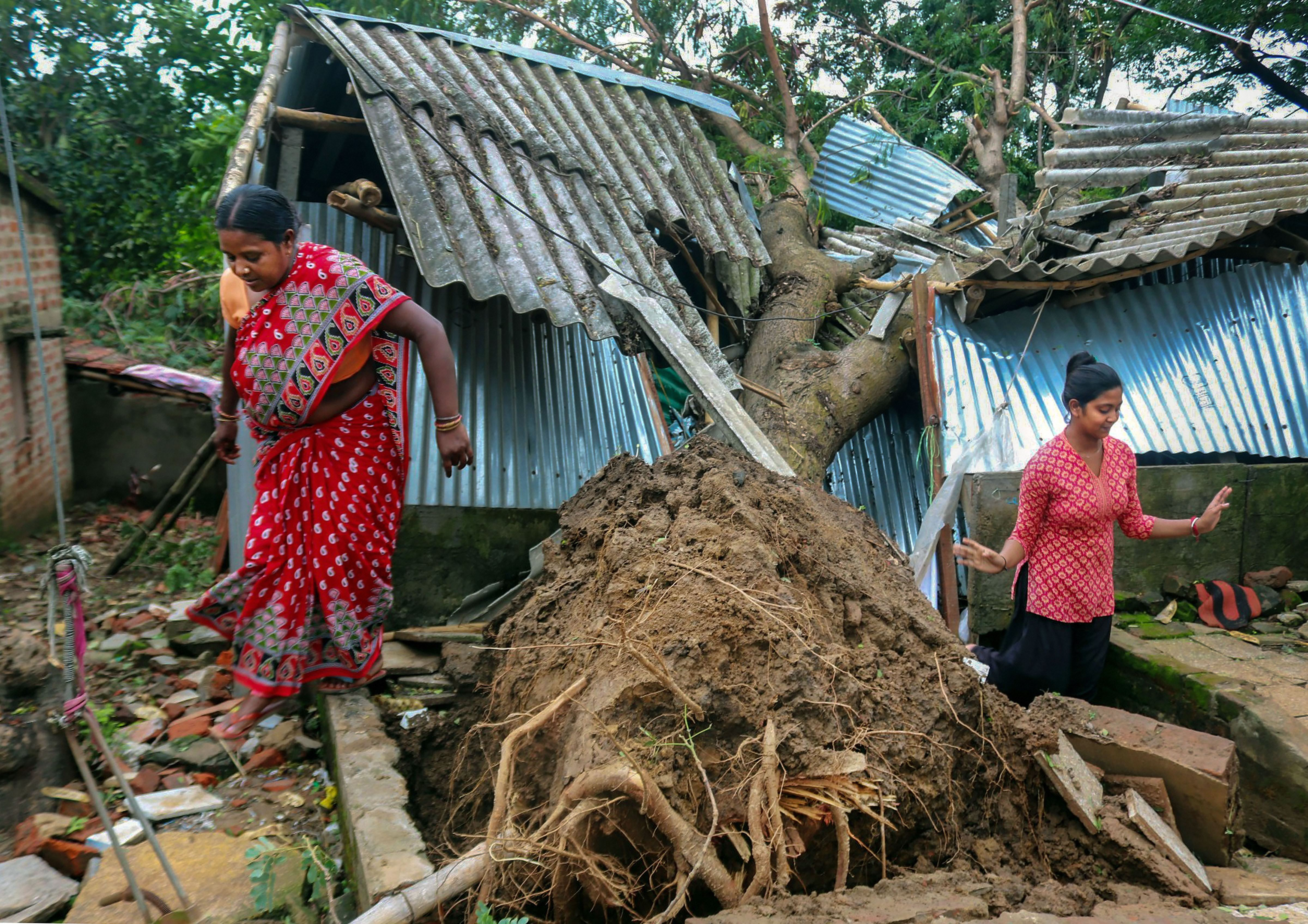 Residents inspect their damaged house after a tree fell on it during cyclone Amphan, in Burdwan district, Thursday, May 21, 2020.