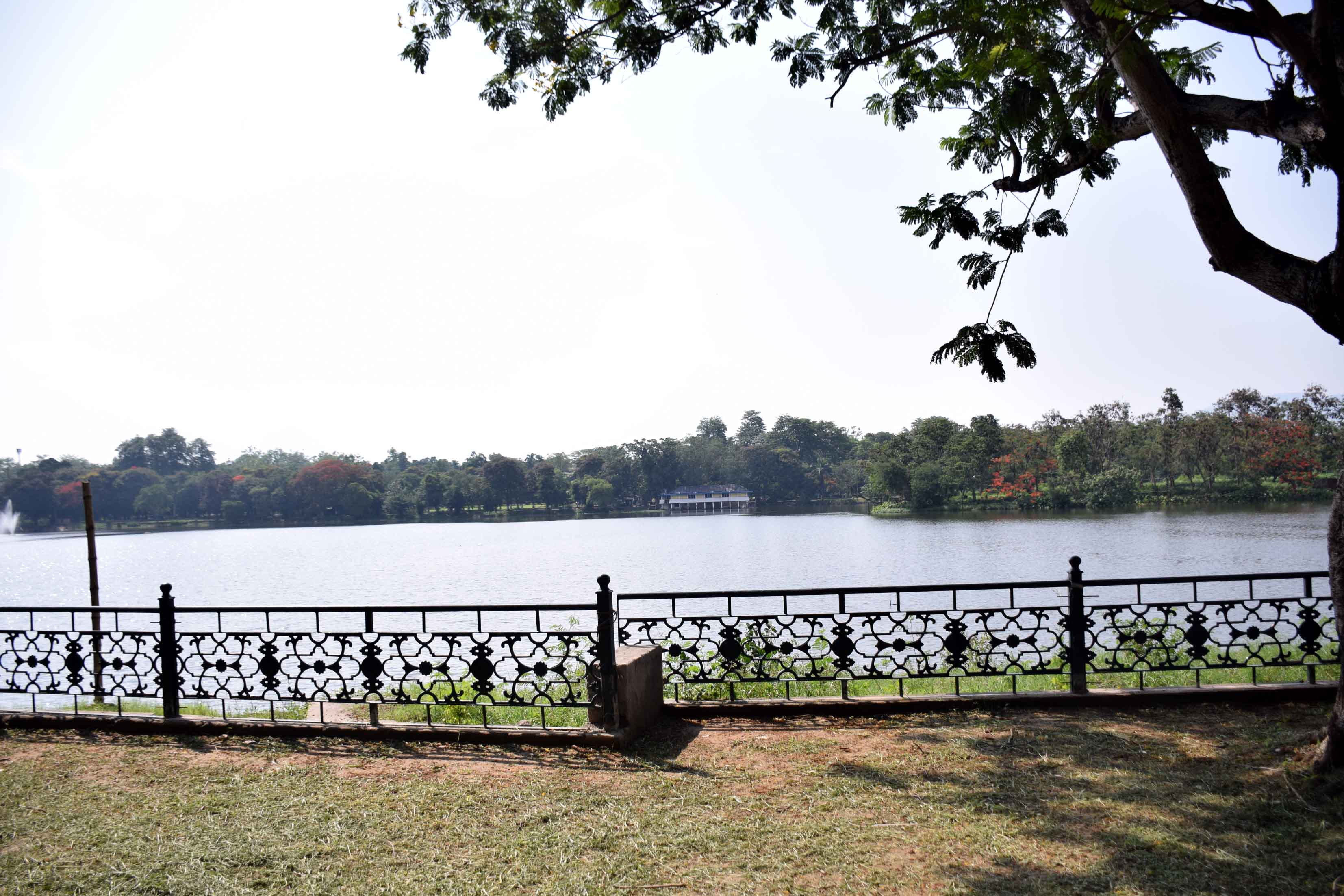 Scenic Jayanti Sarovar in Jubilee Park bustling with rui, catla and mrigal carp