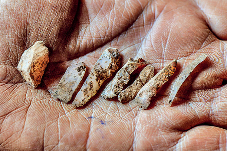 Small stone tools from the Mesolithic era found at excavation sites