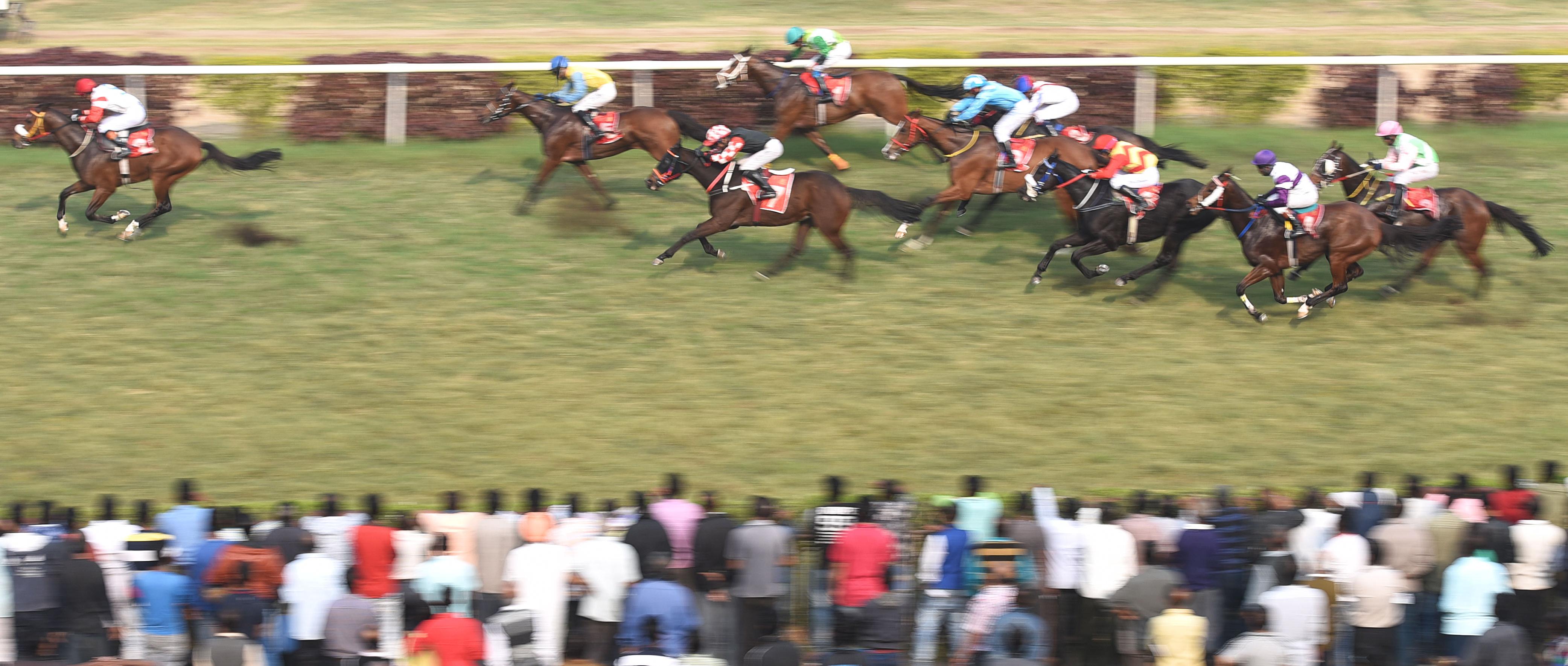Racing at the Calcutta racecourse
