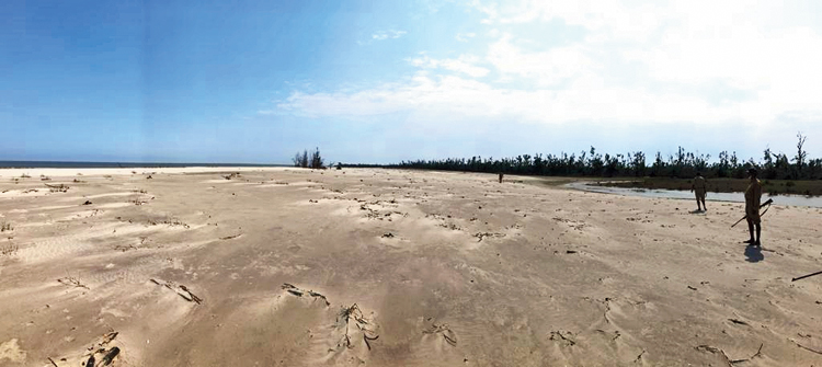 A new beach formed by Cyclone Bulbul in the Sunderbans