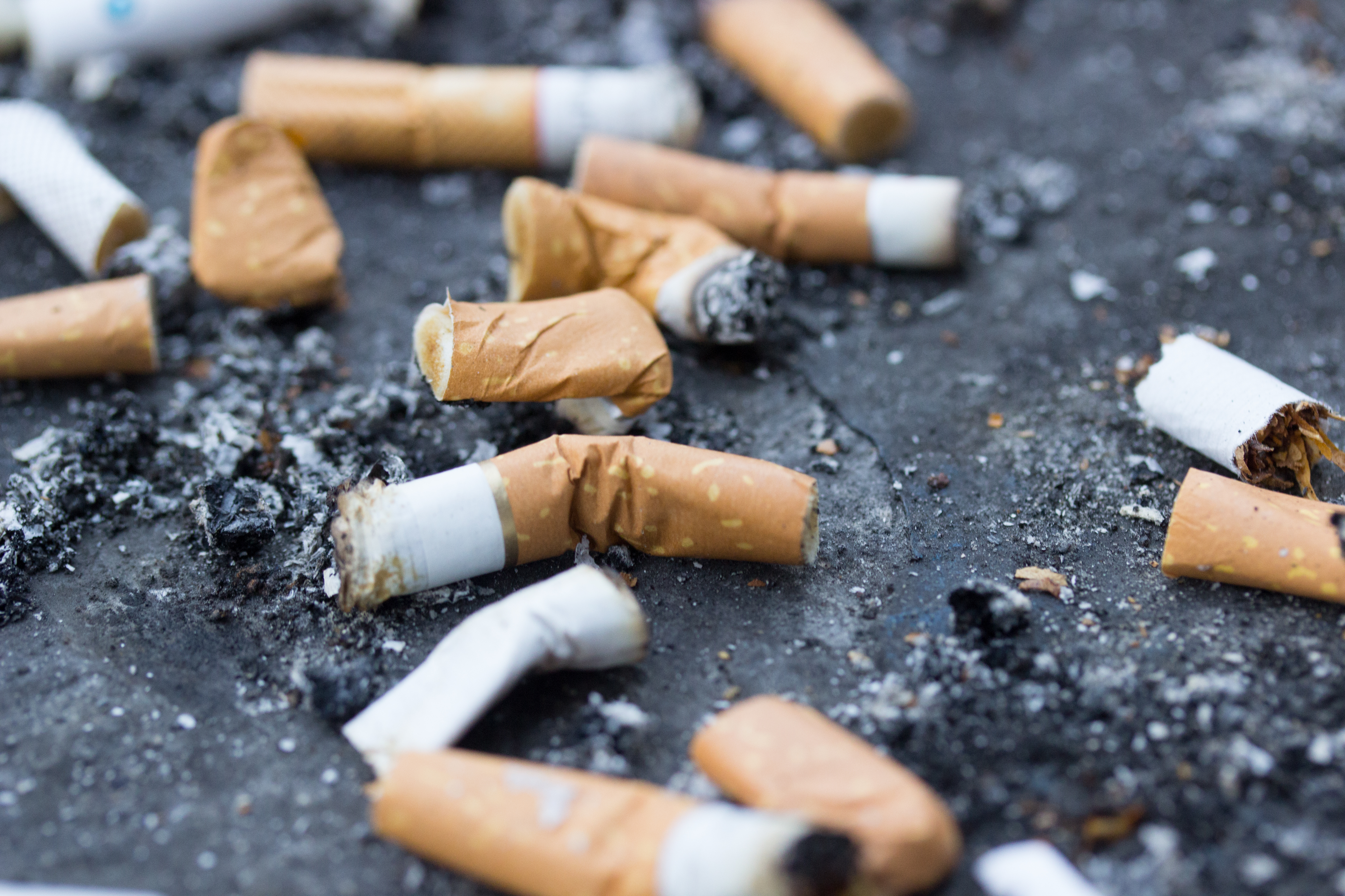 The survey of 487 points of sale around 243 schools in six states has found 233 of these vending tobacco products.