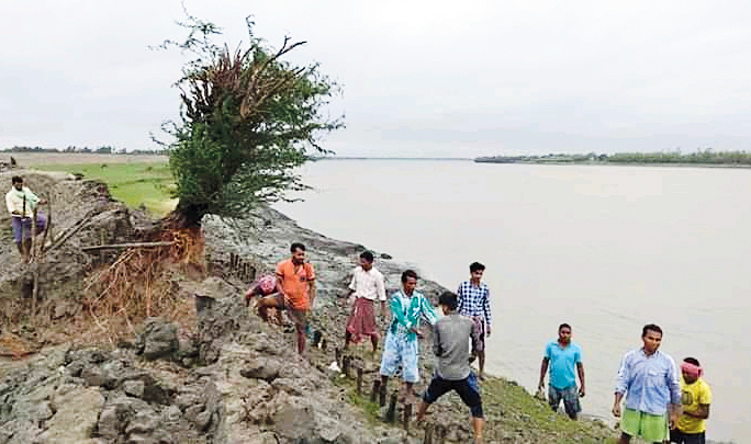 The pictures above show the repairs of other portions of the breached embankment at Sandeshkhali
