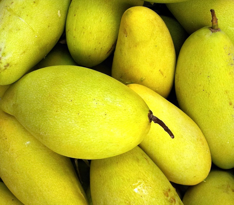 Two recipes to make the most of the mango season