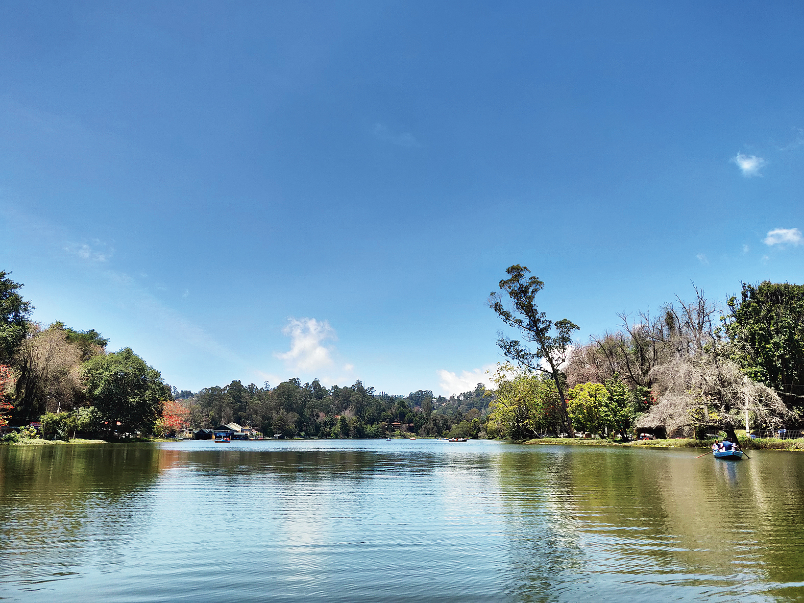 Located in the heart of the city is the famous Kodaikanal Lake. One can go for a 30-minute boat ride on its placid waters or just soak in the peaceful ambience from the shore. You can take two- and four-seater pedal boats, or, if you want to make it romantic, a shikara. It makes sense to take a boat with a boatman though. Those scared of water can go for horse or bicycle rides around it