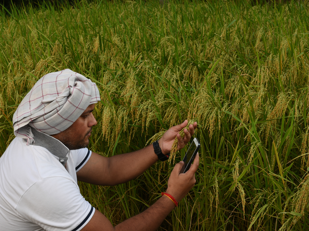 A mobile app launched to provide a platform for farmers to hire farm implements from each other