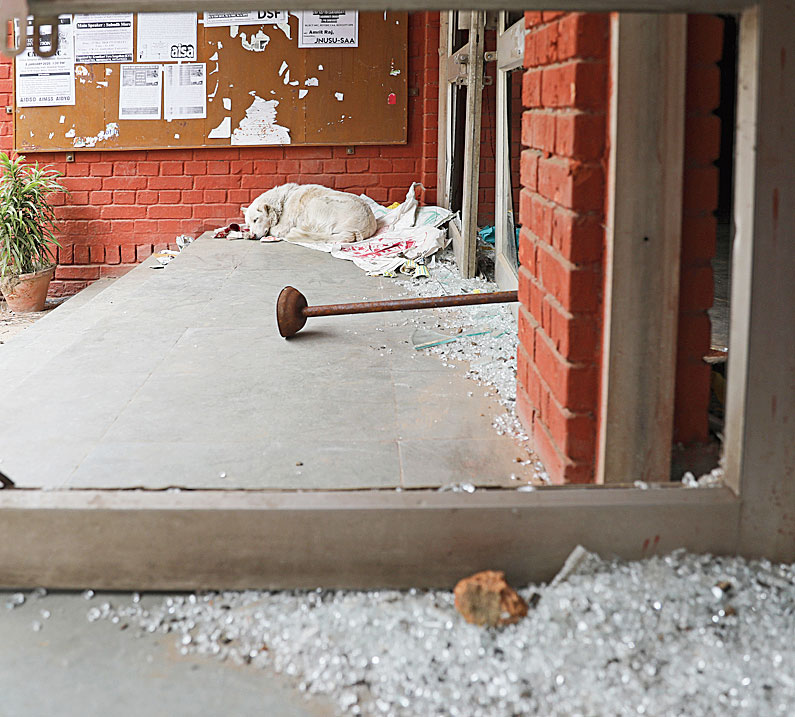 A dog rests next to glass scattered near the Sabarmati hostel entrance, which was vandalised by masked assailants at the Jawaharlal Nehru University in New Delhi on January 6, 2020.