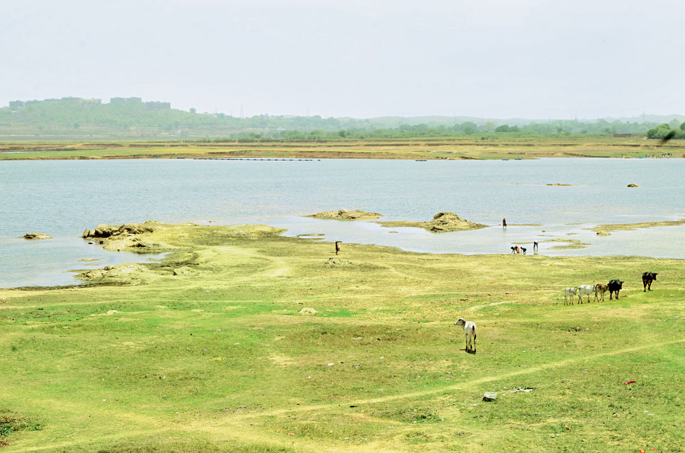 People collect water from Dhurwa dam in Ranchi on Wednesday. The water level of the dam, where one of the solar plants will come up, has been dipping sharply due to rise in temperature.