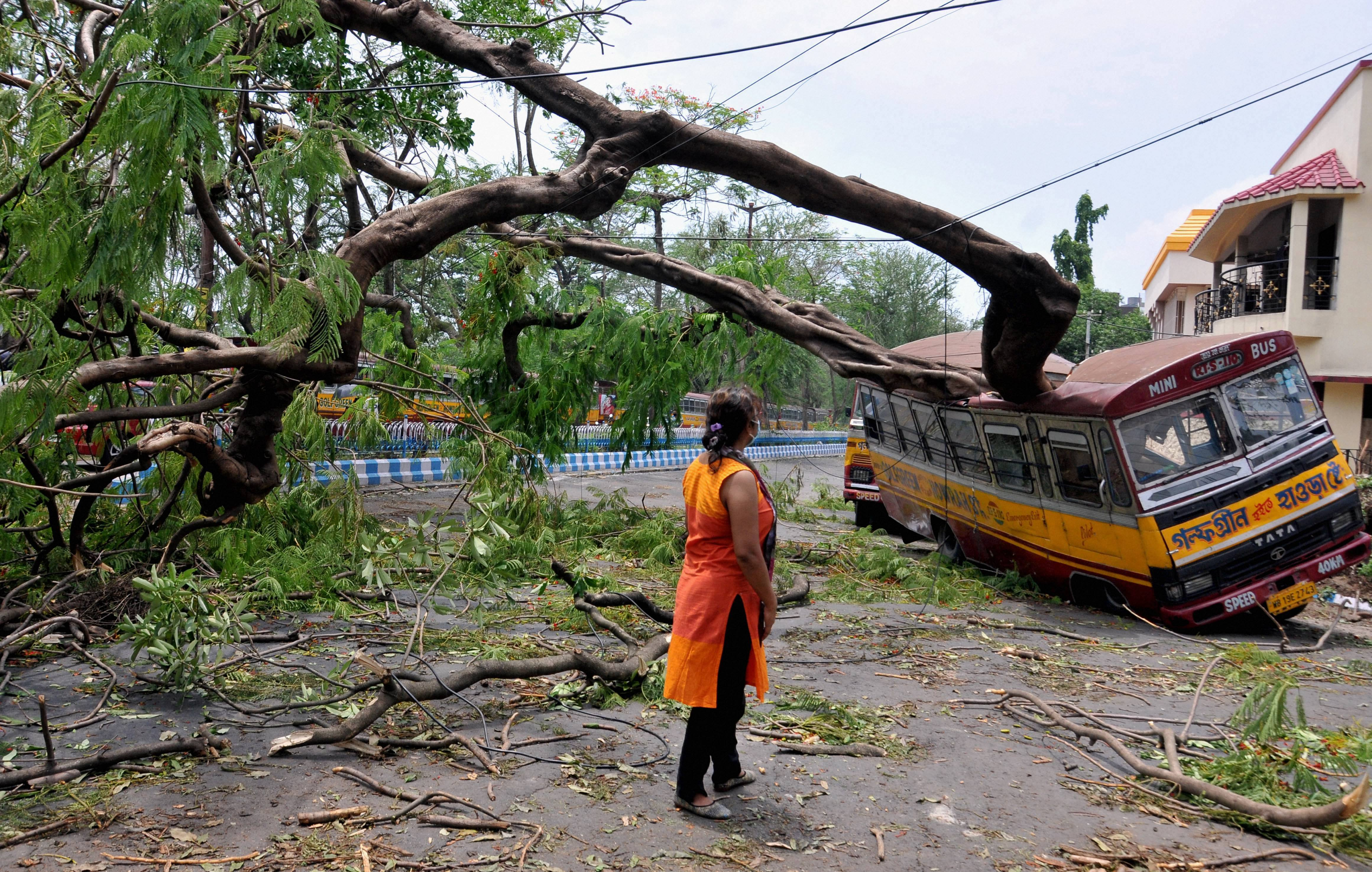 A woman looks on at the mangled remains of a bus after a tree fell on it, in the aftermath of Cyclone Amphan, in Calcutta