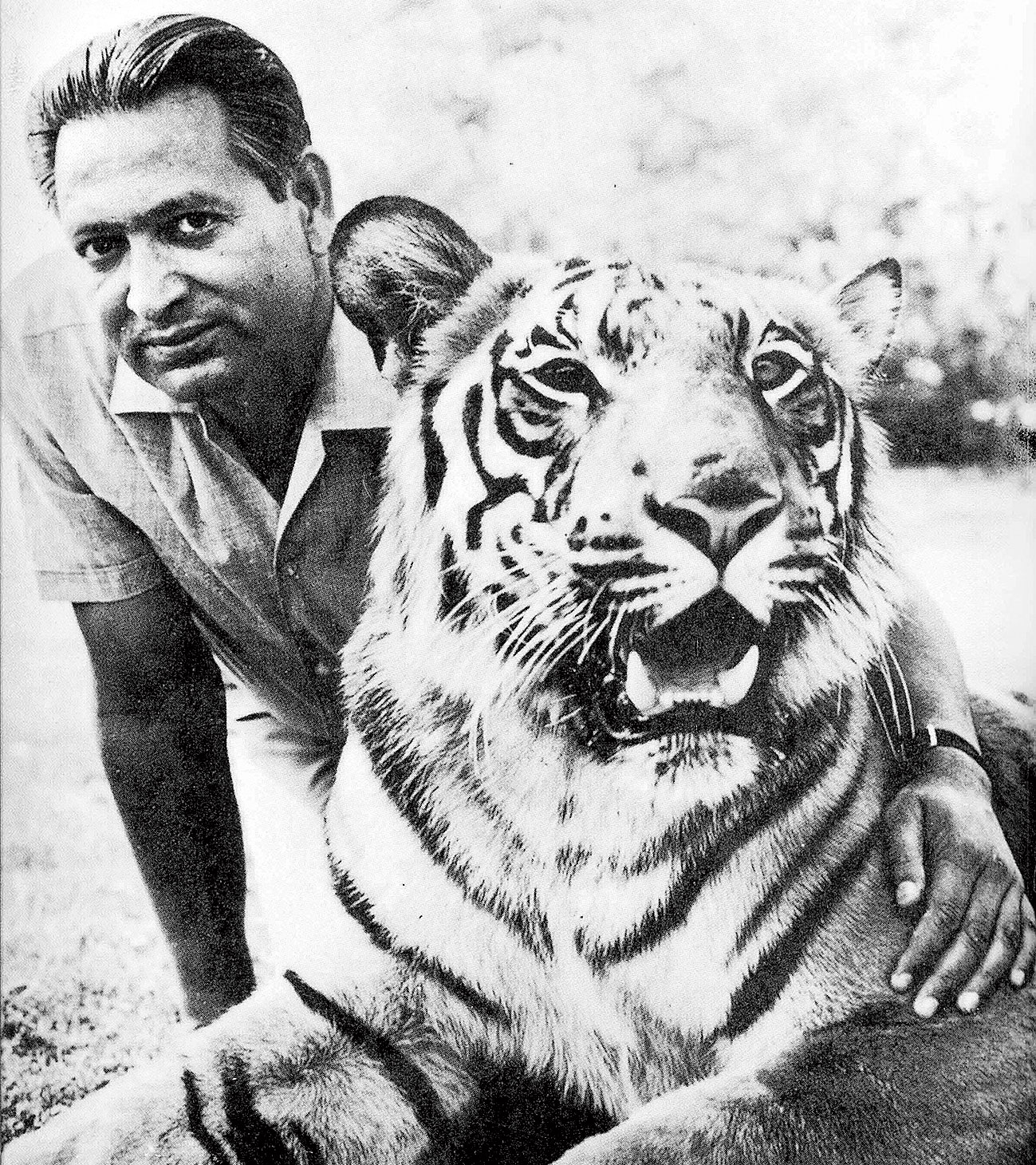 Kailash Sankhala, the first director of Project Tiger