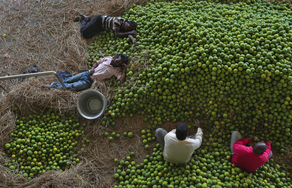 Two Indian workers rest lying on sweet lemons as others sort them at a wholesale fruit market in Hyderabad, India, on Monday, March 2