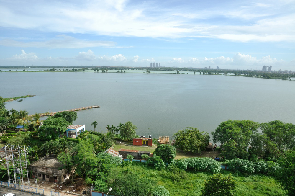 A view of the East Kolkata Wetlands. Given that directives from green bodies and even the courts are flouted, is there a case to be made for amending existing laws to arm benign environmental tribunals with more teeth?